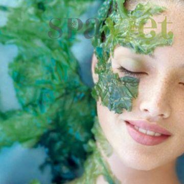 Cùng nghệ sĩ Kim Xuân khám phá công dụng làm đẹp từ tảo vi kim