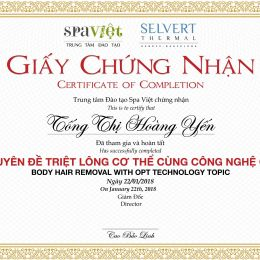 Tống Thị Hoàng Yến